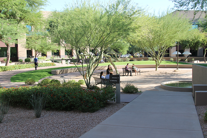 Vanguard's Scottsdale, Arizona office, shot of the main courtyard, the hub between three buildings