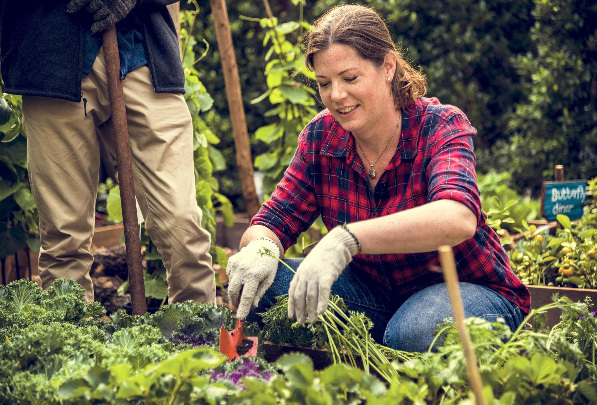 Woman farmer gardening at countryside