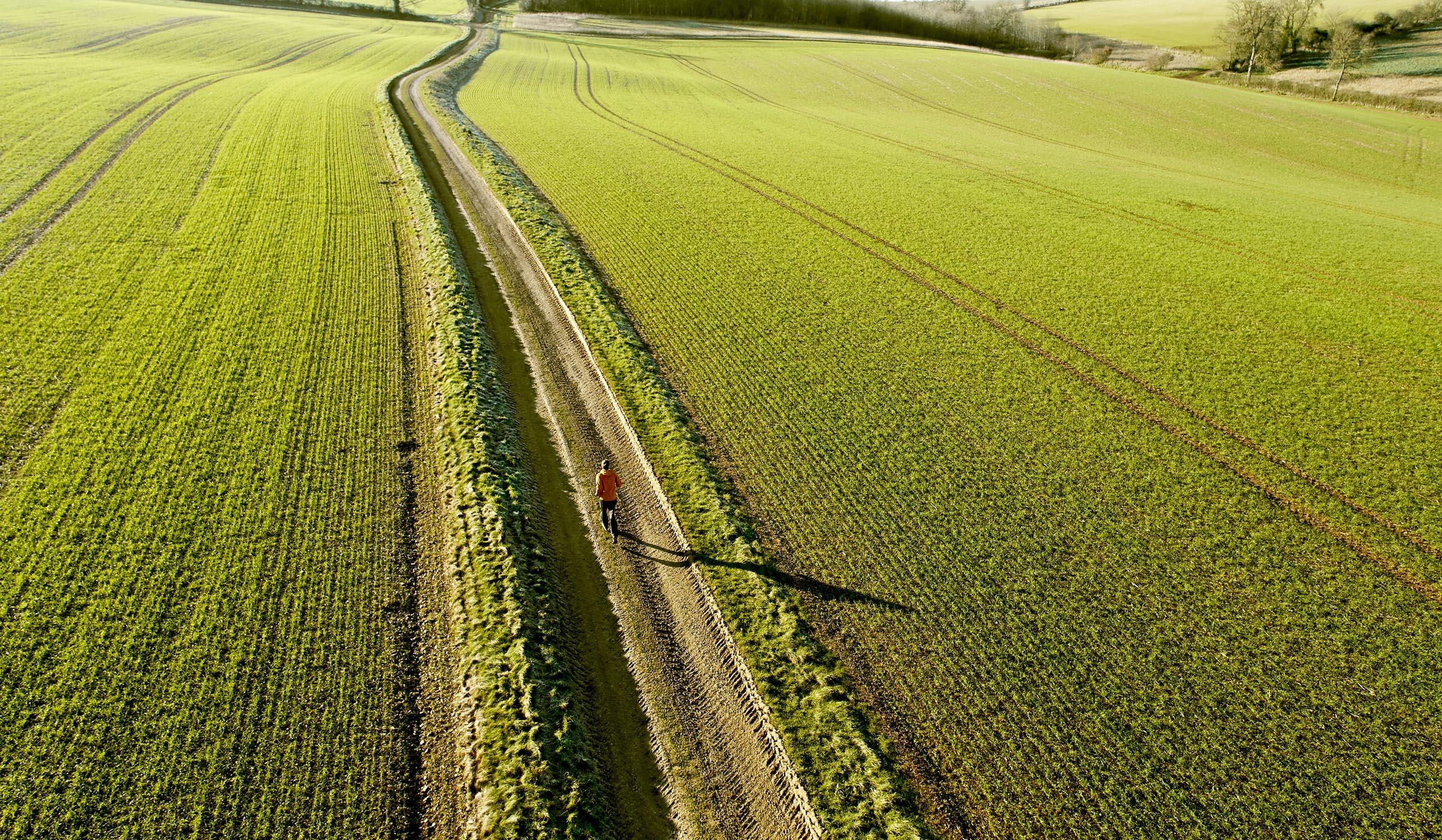 Jogger in field