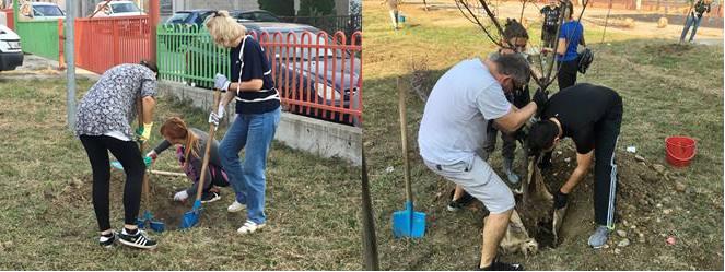 Belgrade tree planting event