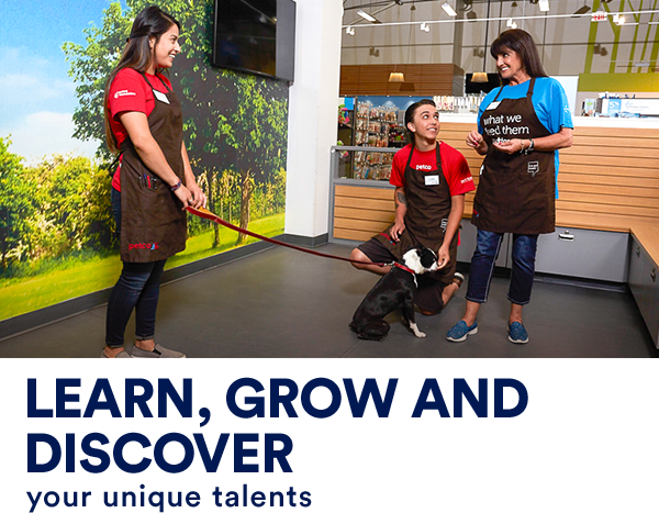 A female Senior Dog Trainer is teaching a male and a female Dog Trainer Apprentice how to teach a little dog to sit and stay. Text across the image reads, shake hands with new learning opportunities.