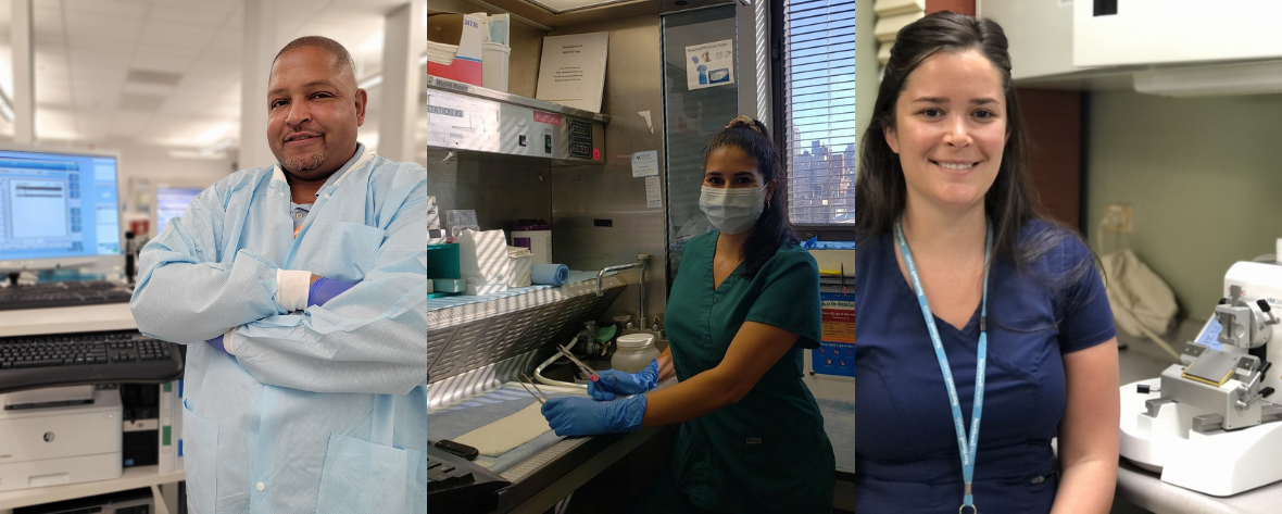 medical professional lab week