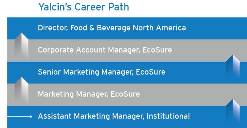 view yalcins career path in the mba - Mba Career Opportunities Career In Mba Career Path