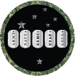 AVETS icon showing dog tags for all the service branches