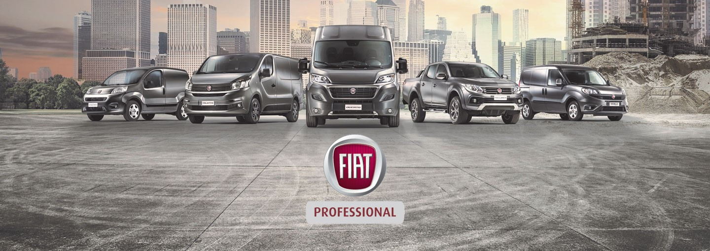 Our Brands fiat professional banner