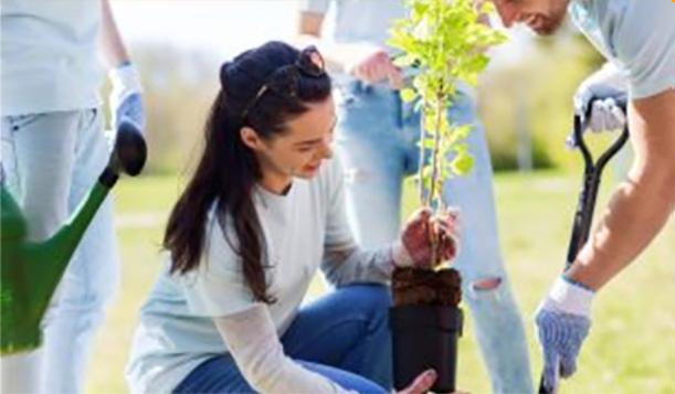 Mężczyzna w rękawicach ogrodniczych kopie łopatą dół w ziemi, a kobieta przygotowuje się do zasadzenia niewielkiego drzewa. Dwie częściowo zasłonięte osoby w dżinsach stoją w tle i obserwują.