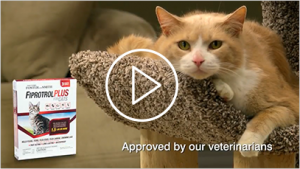 Petco Flea and Tick Control