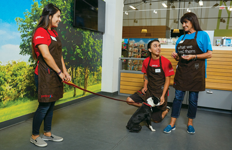 A female Senior Dog Trainer is teaching a male and a female Dog Trainer Apprentice how to teach a little dog to sit and stay.
