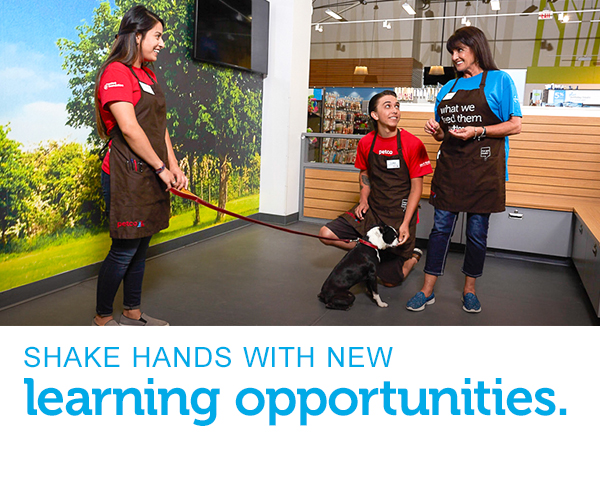 "A female Senior Dog Trainer is teaching a male and a female Dog Trainer Apprentice how to teach a little dog to sit and stay. Text across the image reads, ""shake hands with new learning opportunities."""