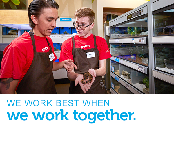 Two male employees, a Sr. Aquatics Specialist and a Store Partner, are holding and examining a small snake. Text across the image reads 'we work best when we work together.'