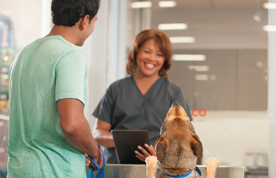 Female Licensed Veterinary Technician holding a tablet, checking in a dog and his owner.