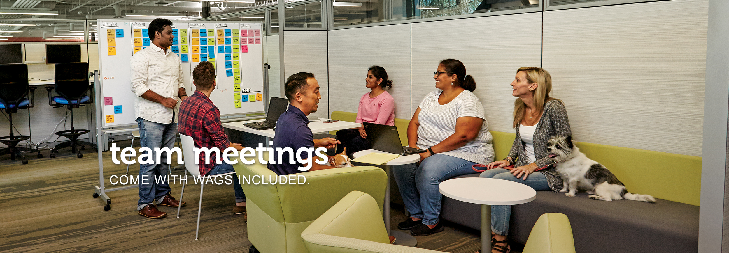 "A gathering of diverse men and women meeting in an informal lounge, with a whiteboard covered in sticky notes in the background. In the foreground, a little dog sits on the sofa beside his female owner. Text across the image reads, ""team meetings come with wags included."""