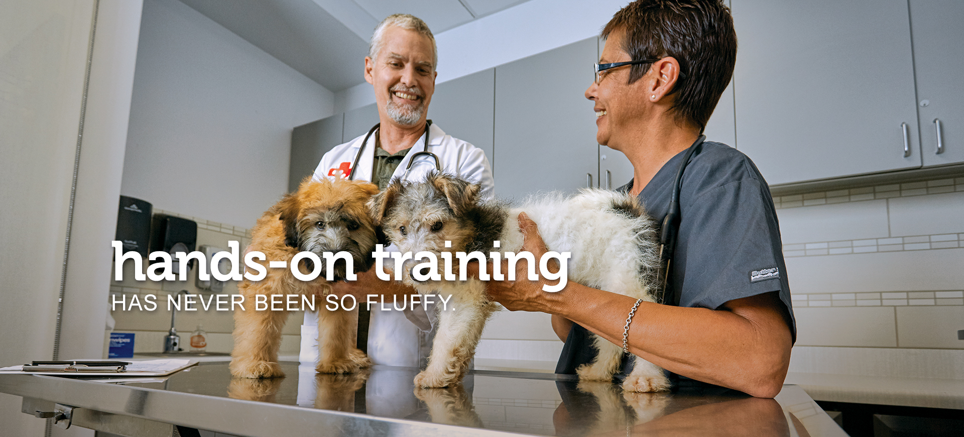 A male veterinarian and a female veterinary assistant talking while working with two fluffy puppies on an exam table. Text across the image reads 'hands-on training has never been so fluffy.'