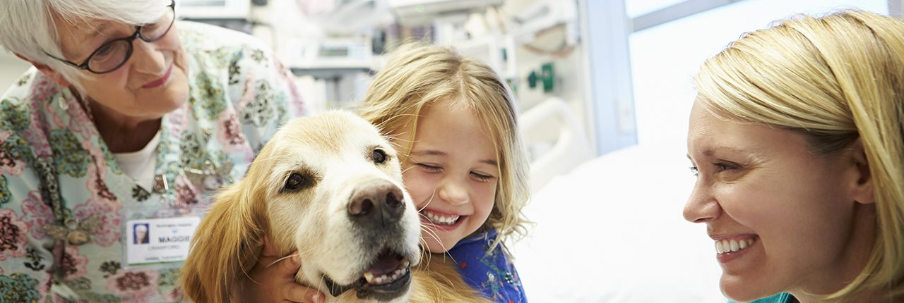 Huntington Hospital therapy dog, nurses and child