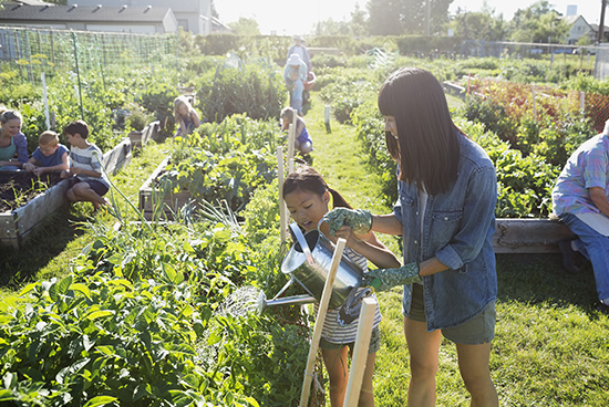 Teaching kids with gardening