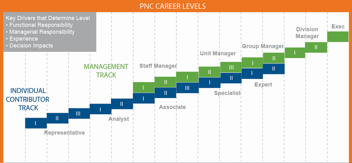 career levels