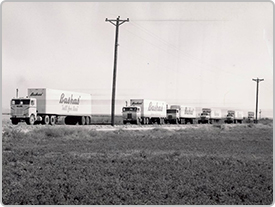A historical image features a line of Bashas' trucks following one another down a road, likely headed from the Distribution Center to stores.