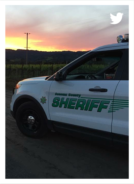 Connect to Twitter Sonoma Sheriff
