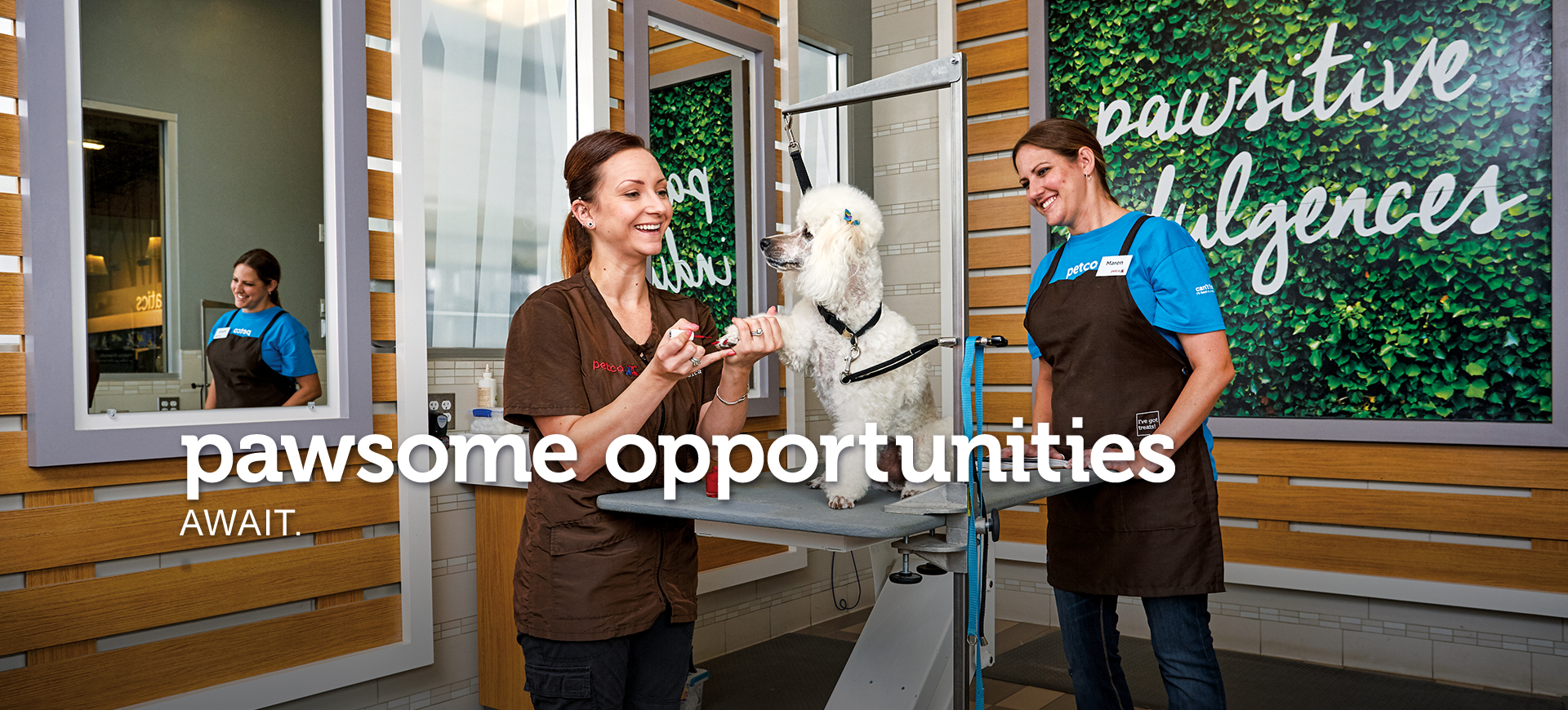 pawsome opportunities