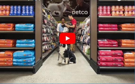 petco store careers thumbnail