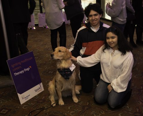 spark-therapy-dogs