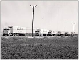 Una imagen histórica muestra una fila de camiones de Bashas' que se suceden por una calle, probablemente desde el Centro de Distribución a las tiendas.