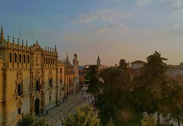 両側に大きな木が並ぶ歴史的建物