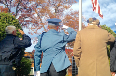 civilian workforce saluting-flag