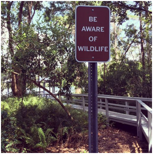 a sign along a shaded, wooden path that reads 'Be aware of wildlife