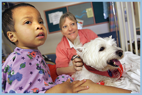 Huntington Hospital becomes one of the first full-service hospitals in the United States to offer a pet-assisted therapy