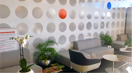 An office photo of polka dots patterned wall covering with sofa & charis with greenary plants in front of it
